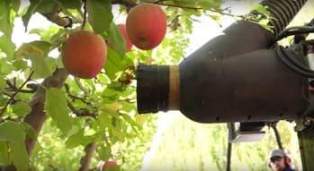 robot agrícola para recoger frutas fabricado por Abundant robotics
